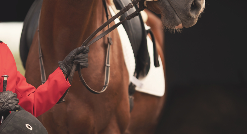 Can I Treat Horse Heaves With Supplements?