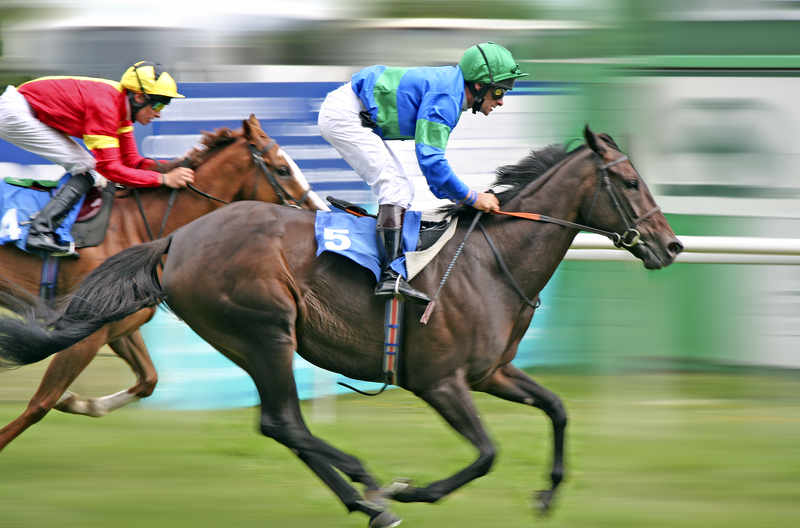 Safe Alternatives to Lasix for Horses